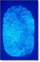 dna_fingerprint